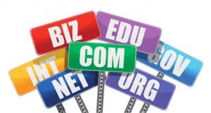 E-ticaret Girişimcileri Alan Adı Tercihi